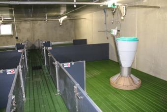 Vue d'un post-sevrage. Les salles sont chauffées via un aérotherme à eau chaude. L'air neuf est   préchauffé en passant dans un échangeur air-air avant d'entrer dans les comble.